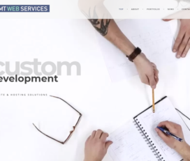 AMT Web Services